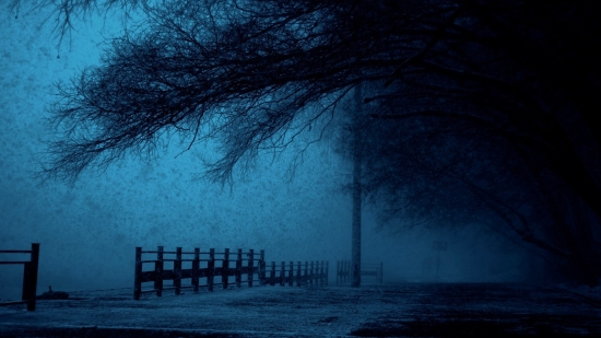winter-1732882_1920-1.jpg